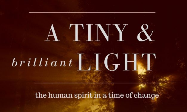 December 17th 2017- Release of 'A TINY and BRILLIANT LIGHT: the human spirit in a time of change.'